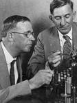 Typewriter conviction