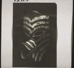 Mask from a funerary celebration in Kotawaringin, Maske v. Totenfest i. Kotawaringin