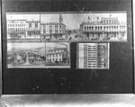 Various Petaluma, California city blocks and buildings, 1885