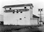 Diamond Walnuts, North Hollywood, 1920