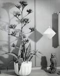 Ceramic planter and owl, Scripps College