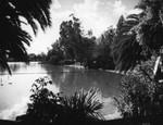 Float divider across Lincoln Park Lake