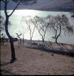 Scene by a river in Korea