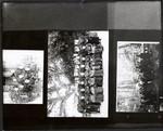 Copy photos of Jesuits