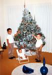 Brothers at Christmas