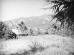 View from Mount Wilson Highway