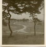 Winding village road shot through trees