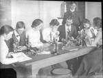 People using microscopes