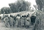Ethiopia, the Bale Province, spring 1979. The temporary housing at the Resettlement Camp are ma, Etiopien, Baleprovinsen, forår 1979. De midlertidige boliger i genhusningslejren er lavet af plastik i Danmark, leveret af FKN. (Anvendt i: Dansk Missionsblad nr 4/1979)