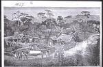 Aburi Stadt, Aburi town