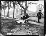 Murder, 1960