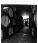 Wine barrels in a wine cellar