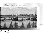 Belgium - Retting Flax, River Lys, Courtrai