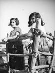 Girls on a carreta