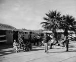 Palm Springs Playhouse