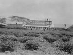 Assam, Nordindien. Mornai Tehave, 1930-31. 5: Tørringshus for teblade; 6: Opbevaringshus til te; 7: Fabriksbygning; 8: Kontorer; 9: Apotek og Poliklinik. Det høje hus er under opførelse, Assam, North India. Mornai Tea Garden, 1930-31. 5: Drying house for tea leaves/ 6: Storage hous