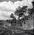 Terraced wall along village path