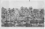 Drawing of the Sacramento waterfront, Sacramento, California, 1850