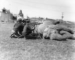 Elephant in military training