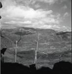 Barren trees against mountainscape