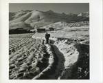 Man trekking through snow to village
