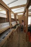InfoSite/ Tijuana: interior with shelves