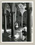 Studying in Eucalyptus Court