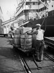 Dock workers