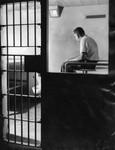 Felon jail cells