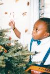 Boy decorates Christmas tree