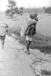 Transport i Nepal. Mange steder skal ALT bæres på menneskeryg, 1988, Transportation in Nepal. In many areas heavy loads must be carried by people, 1988